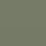 pale eucalypt matt