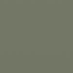 pale eucalypt satin